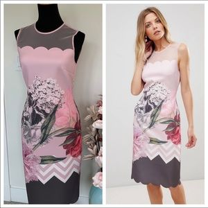 🍏Ted Baker London Arionah palace gardens